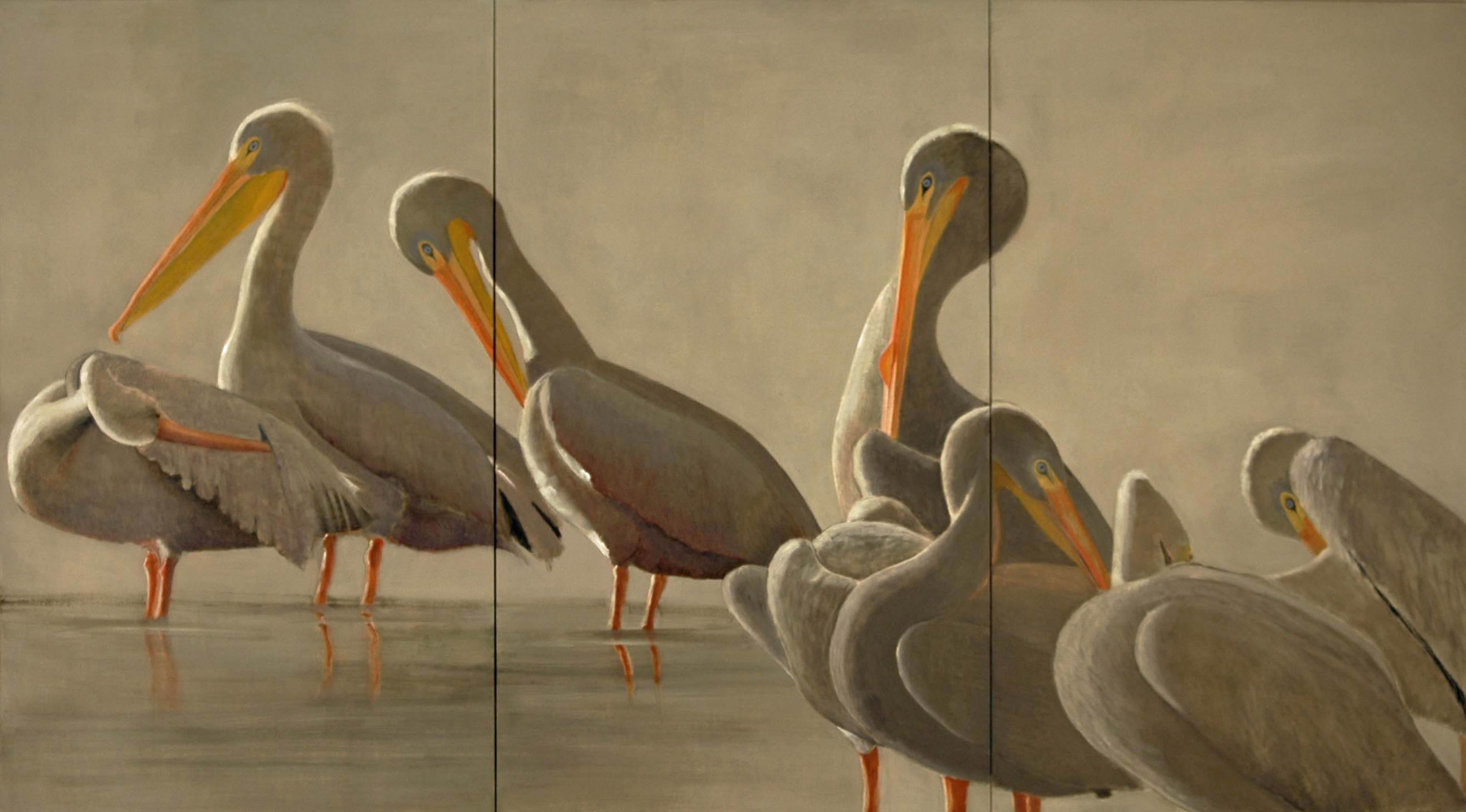 American-White-Pelicans-triptych-full-apx