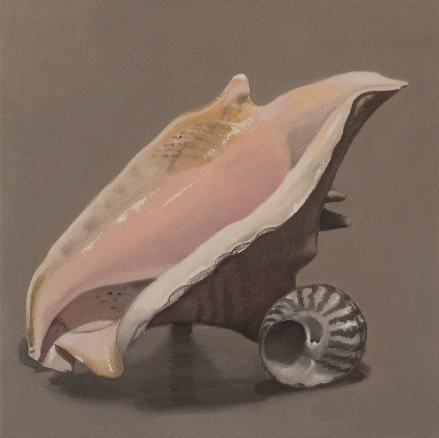 Sea Shell 24x24 2017 web