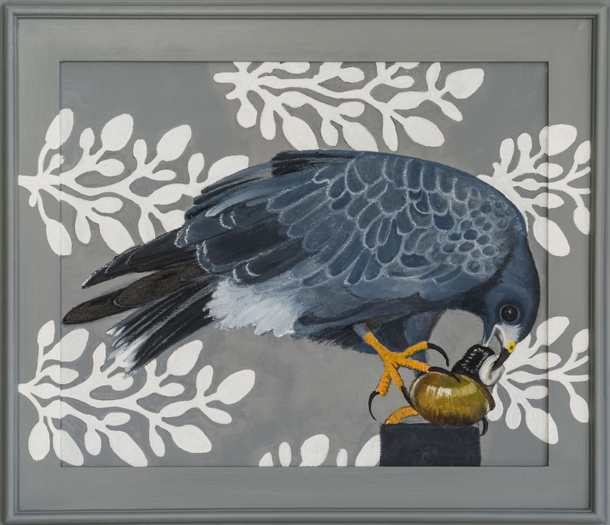 Snail Kite 26x30 (framed) Oil on canvas 2015 web