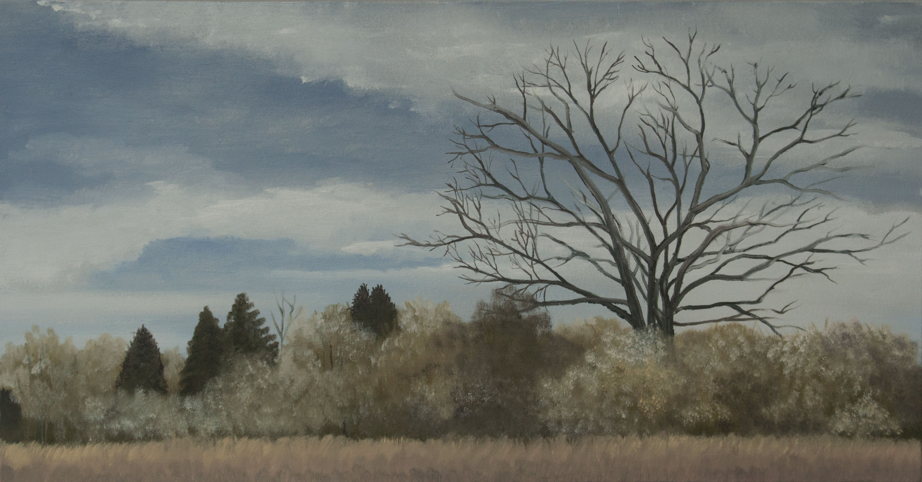 The Field Border 24x46