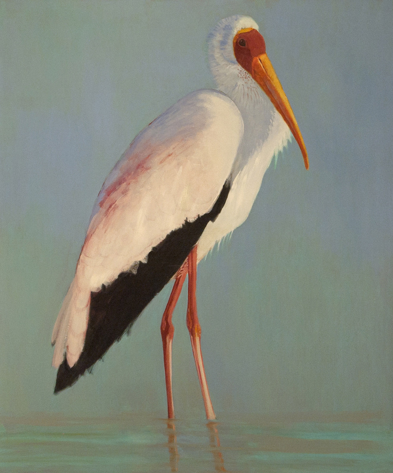 Yellowbilled Stork 60x50 2005 - full2
